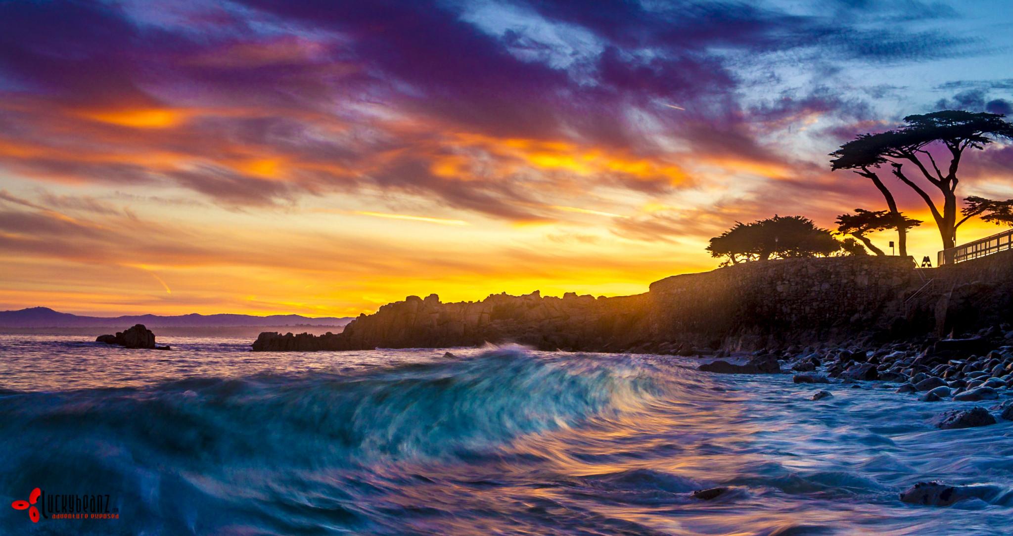 magnificent Monterey bay.