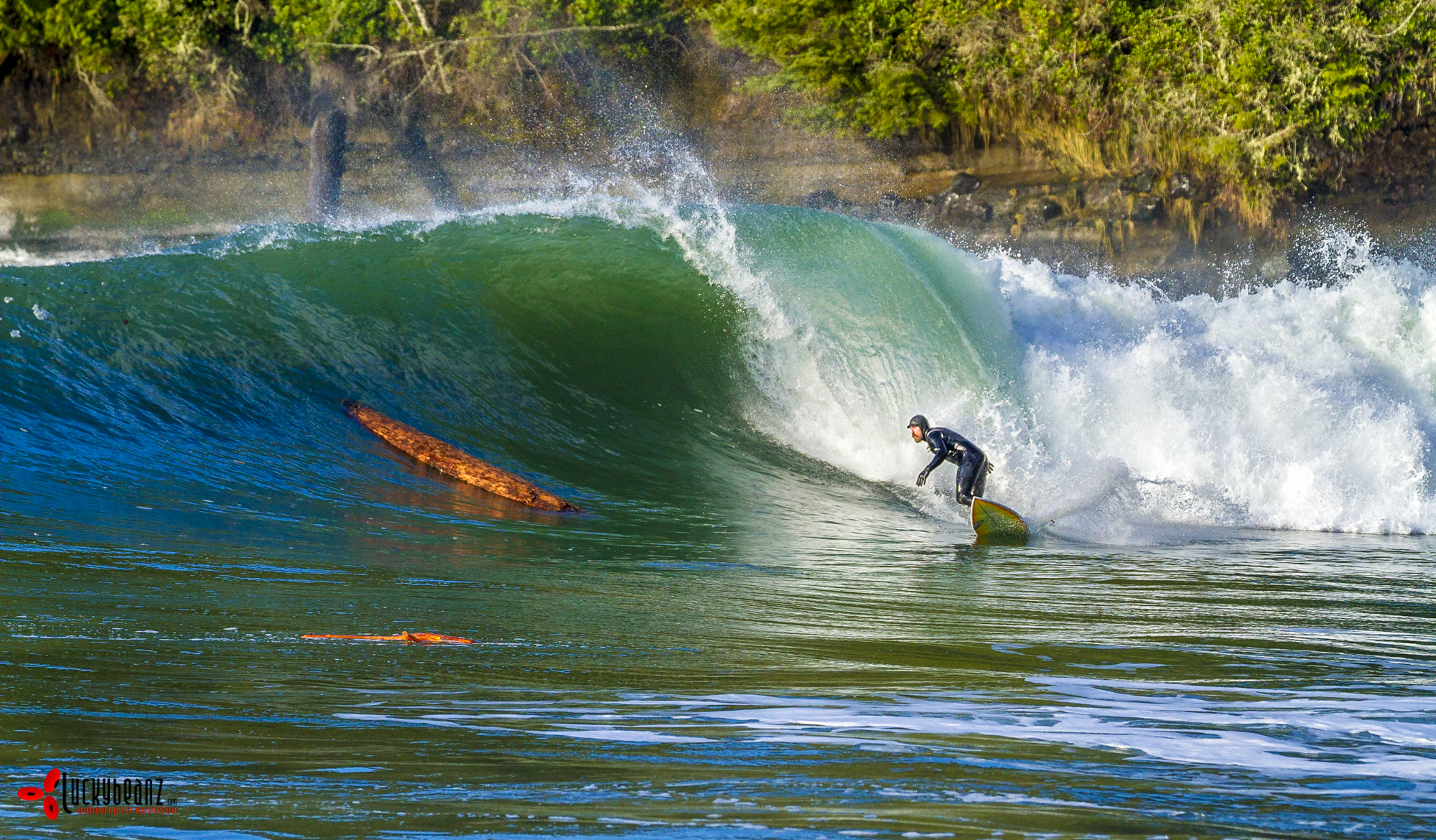 Surfing Vancouver Island North