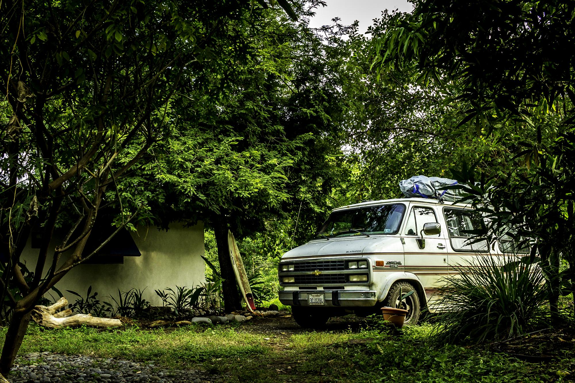 Van under green tree
